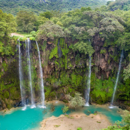 Things to do in Oman- Dhofar