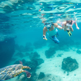 Best time to visit Samoa - snorkelling