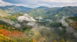 Bwindi Bergpanorama