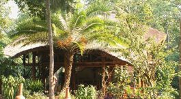 Exterior view of Kibale Forest Camp in Kibale, Uganda
