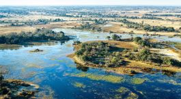 Abenteuerreise ins Okavango Delta