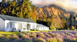 Enchanting Travels South Africa Tours Cape Winelands Hotels Lavender Farm Guest House Scenic