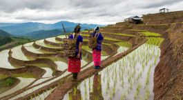 Head where few tread: Undiscovered Cambodia and Vietnam destinations: Hmong Women in Vietnam