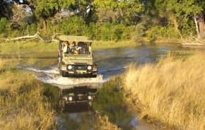 Discover the Best Time to Visit the Okavango Delta