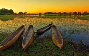 Africa Safaris: Top 5 Things to do at the Okavango Delta