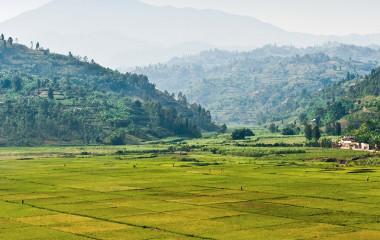 Kigali Hills