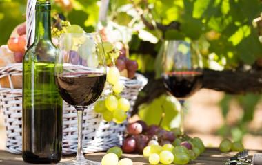 Enchanting Travels Spain Tours Wine