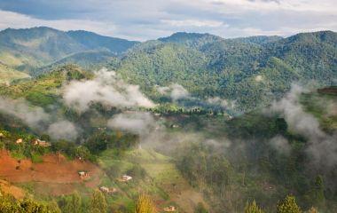 Bergpanorama in Bwindi, Uganda