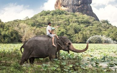 The perfect Sri Lankan elephant trip: animals and nature