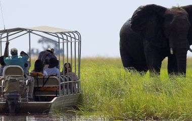 Enchanting Travels Africa Tours Botswana Chobe - 1700