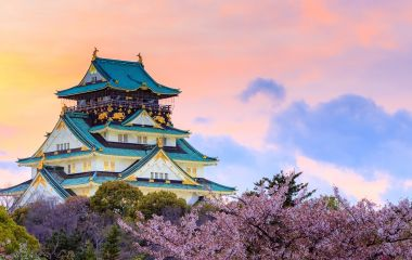 Enchanting Travels Japan Tours Twilight at Osaka castle during Cherry blossoms season in Osaka, Japan