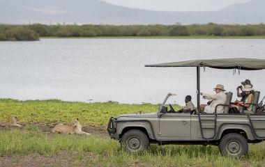 Enchanting Travels - Tanzania Tours - Selous Hotels - Lake Manzi Camp Selous - Game Drive