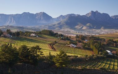 Wine farming area,h vineyards and mountain landscape near Stellenbosch, South Africa