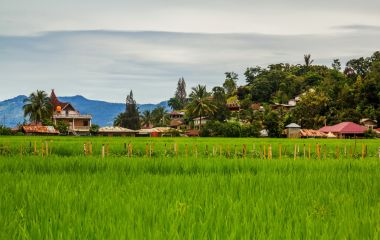 Rural scene of Samosir Island Indonesia, Asia Tours