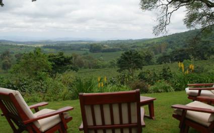 Blick auf grüne Landschaft mit Sitzgruppe