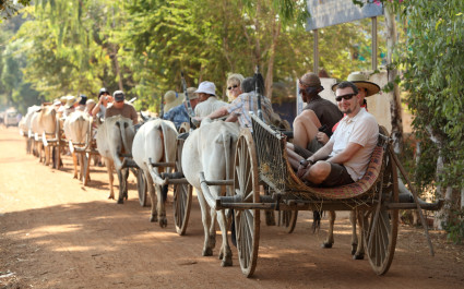 Urlauber sitzen auf Ochsenkarren in Vietnam