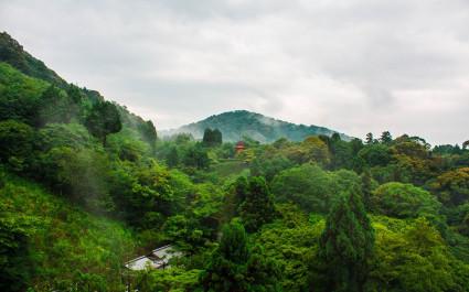 National park around Kiyomizu temple