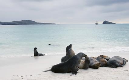 Enchanting-Travels-Ecuador-Galapagos