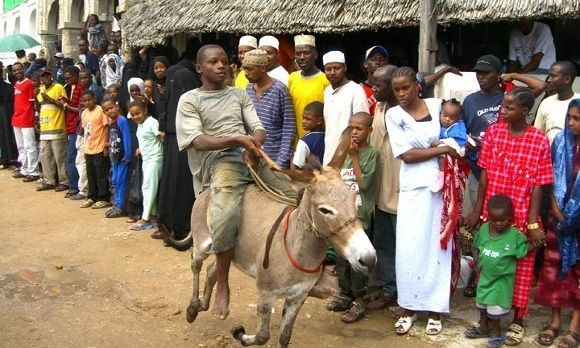 Swahili history revealed with Lamu Cultural Festival