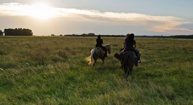 La Bandada, horse riding