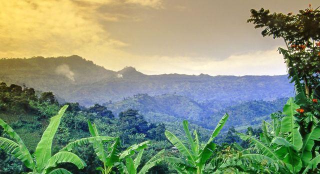 Uganda Sehenswürdigkeiten - Mount Elgon