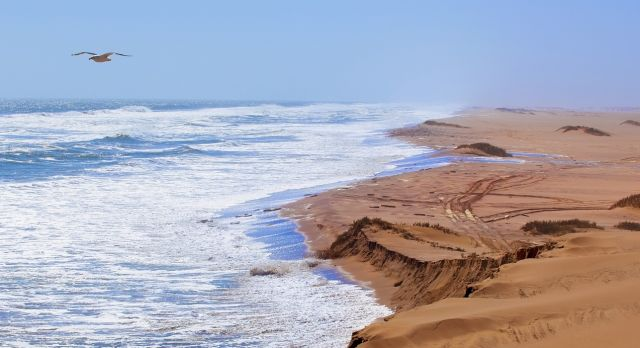 Zu den Highlights von Namibia zählt die surreal schöne Skelettküste