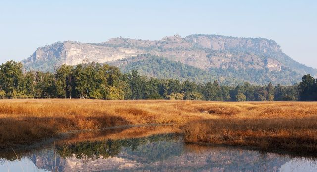 asia-india-north-bandhavgarh-bandhavgarh-hill-tiger-reserve