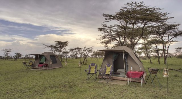 Discover The Top Five Treasures On Your Trip To Kenya