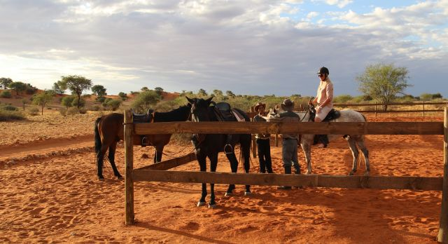 Bagatelle Game Ranch - Luxury African safari