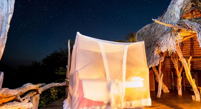 A star bed with a gossamer net for protection