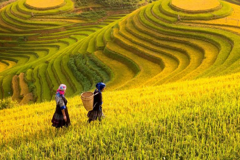 Sapa - Vietnam destinations