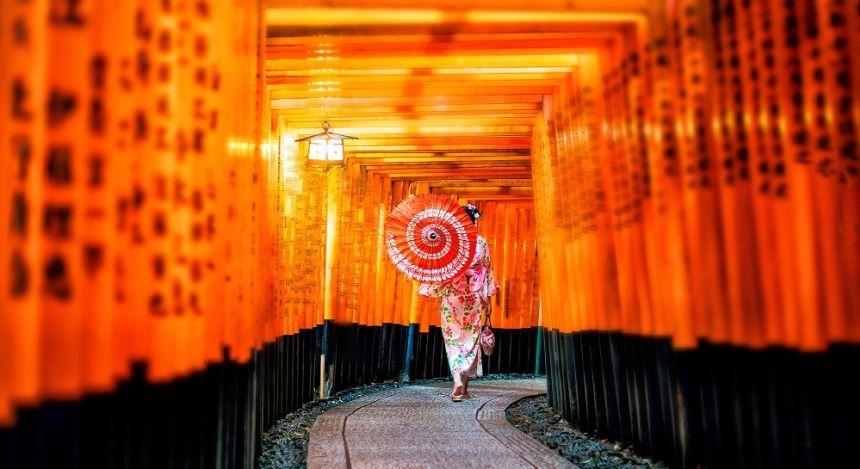 Torii gates at the Fushimi Inara shrine