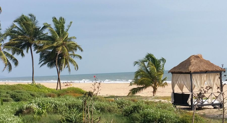PUnser Indien Reisebericht: Palmen, Strand und Meer in Goa