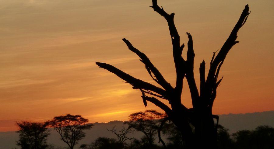 Mount Kenya bei Sonnenuntergang