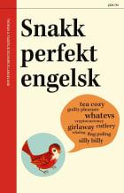 Snakk perfekt engelsk