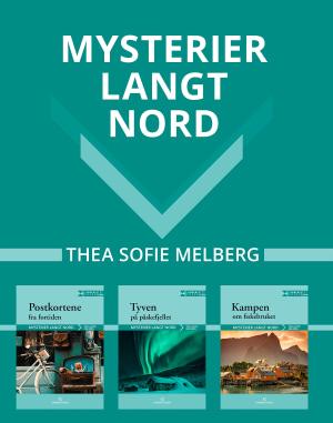 Mysterier langt nord: lettlest serie, d-bøker