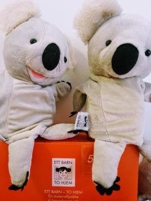 Koalabjørn, hånddukke (Ett barn - to hjem)