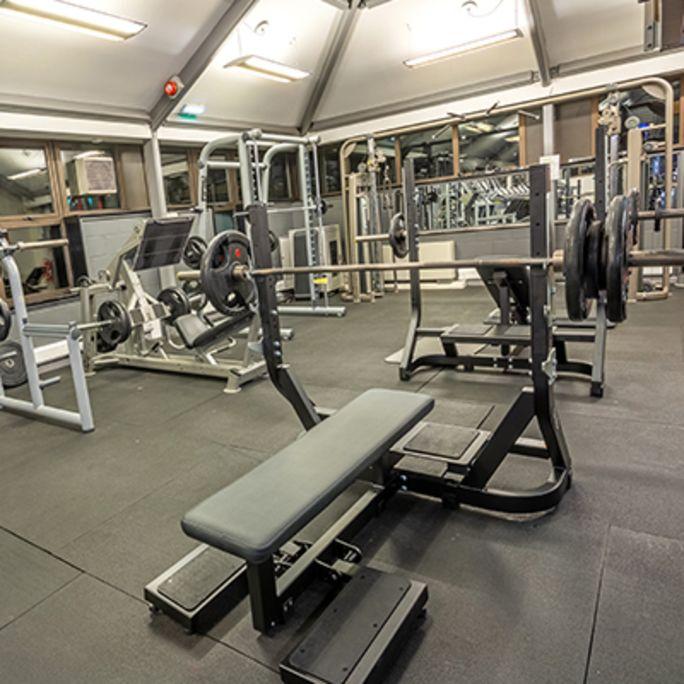 free-weights650x650.jpg