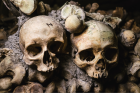 Skulls at the Catacombs of Paris