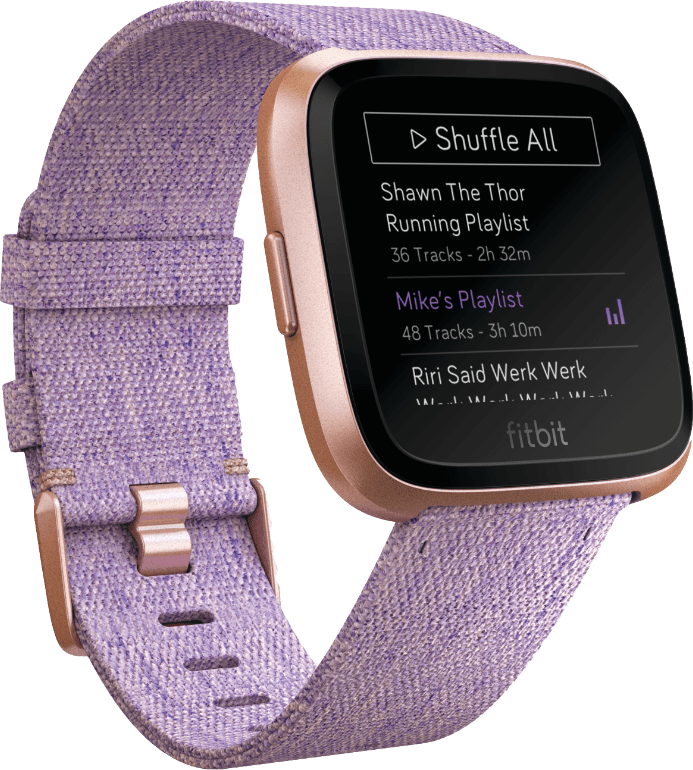 Lavender / Rose Gold Fitbit Versa Special Edition.2