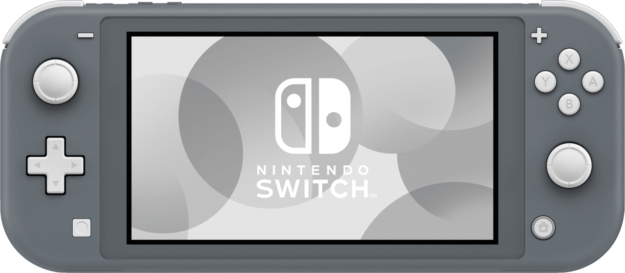 Grey Nintendo Switch Lite.1