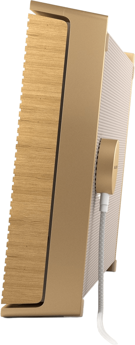 Gold Tone / Light Oak Bang & Olufsen Beosound Level Portable WiFi Speaker.4