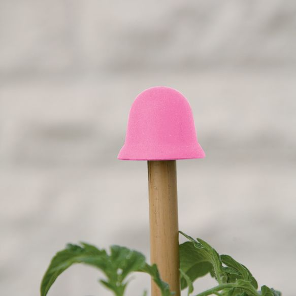 The Cane Topper in Pink from Haxnicks
