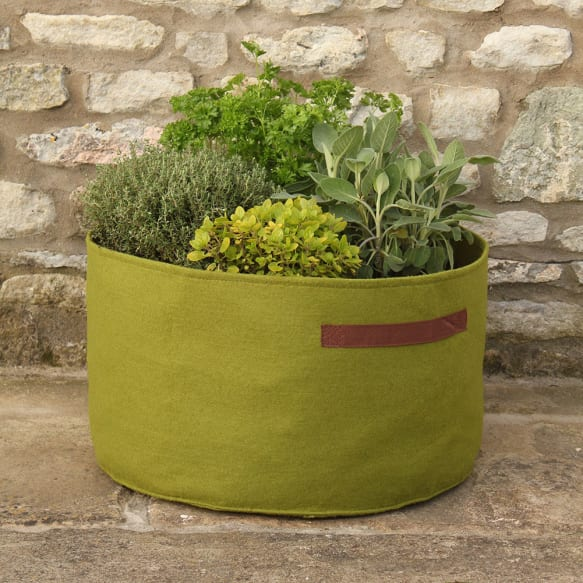 Vigoroot herb Planters from Haxnicks