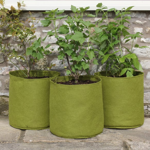 20 Ltr Vigoroot Pots from Haxnicks