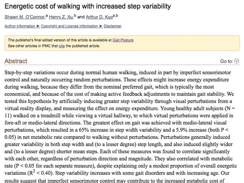 Energetic cost of walking with increased step variability