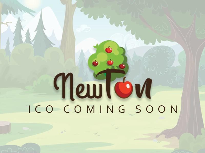 Newton BlockChain Learning Platform