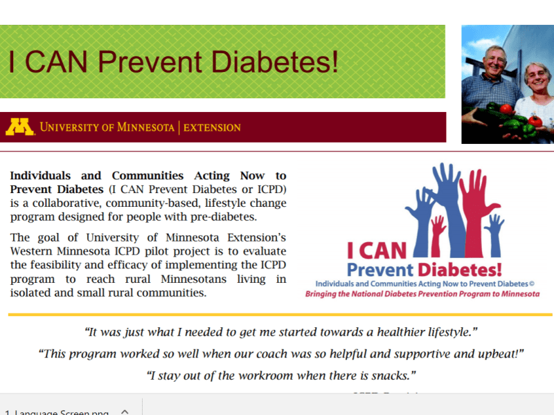 I CAN Prevent Diabetes: Cultural Adaptation