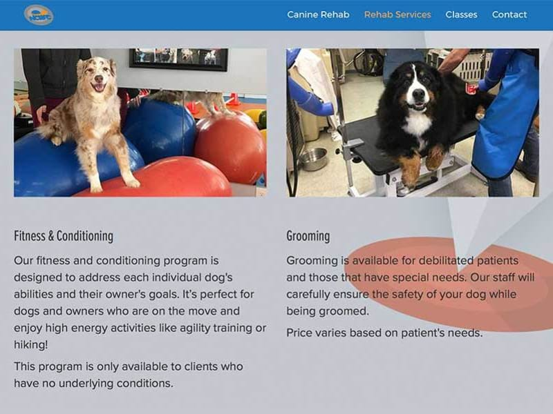 Canine Rehab Site