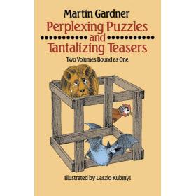 Book-Perplexing Puzzles